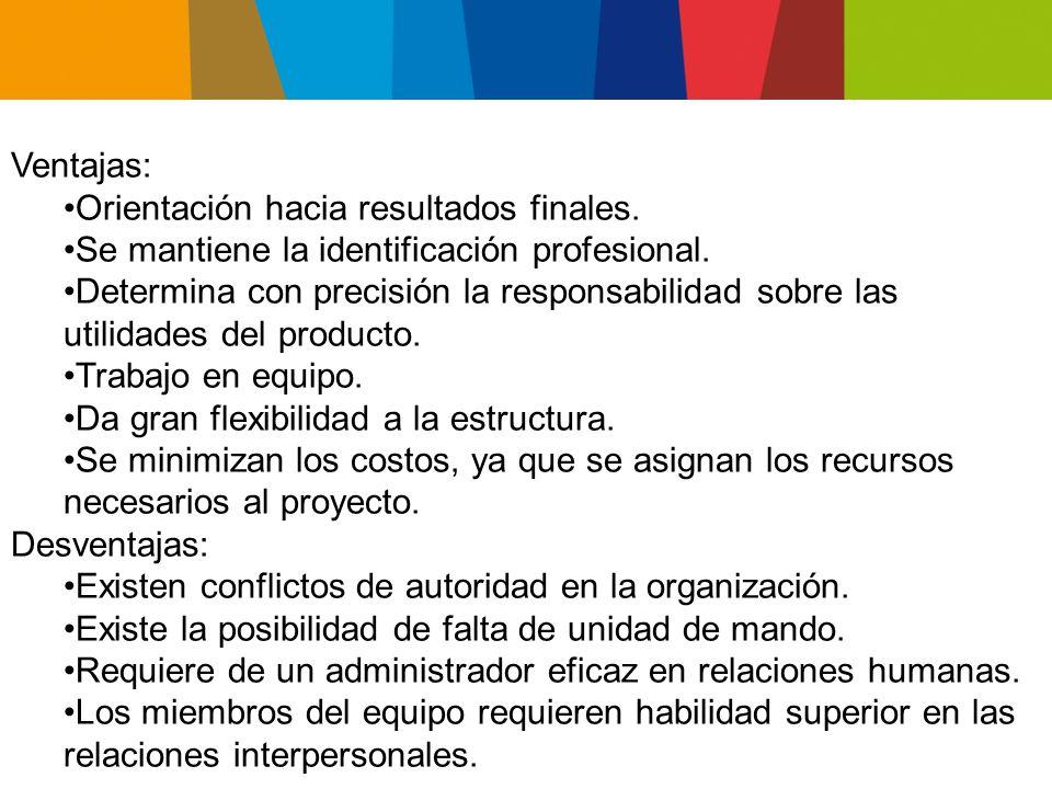 Ventajas: Orientación hacia resultados finales. Se mantiene la identificación profesional.