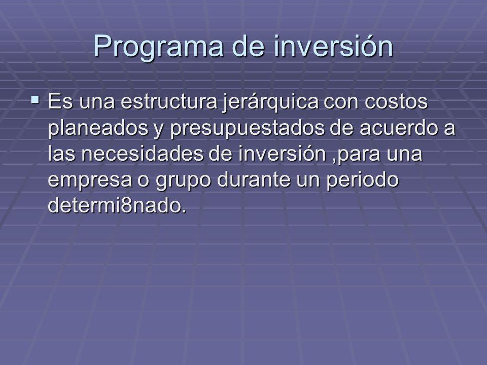 Programa de inversión