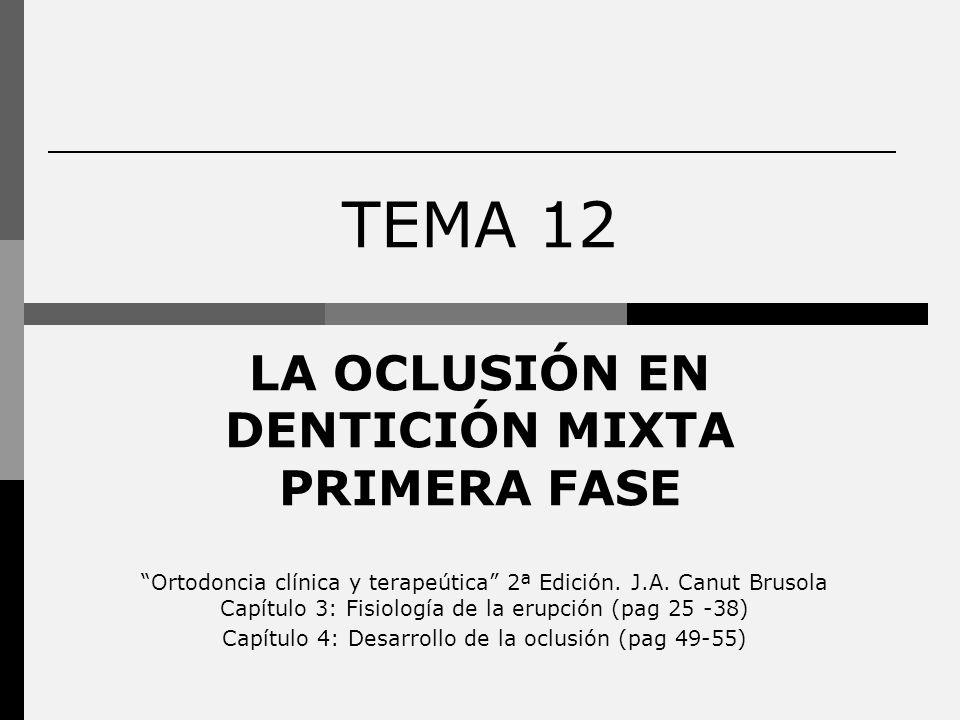 LA OCLUSIÓN EN DENTICIÓN MIXTA PRIMERA FASE