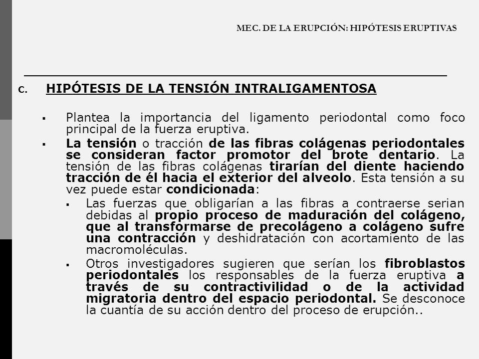 MEC. DE LA ERUPCIÓN: HIPÓTESIS ERUPTIVAS