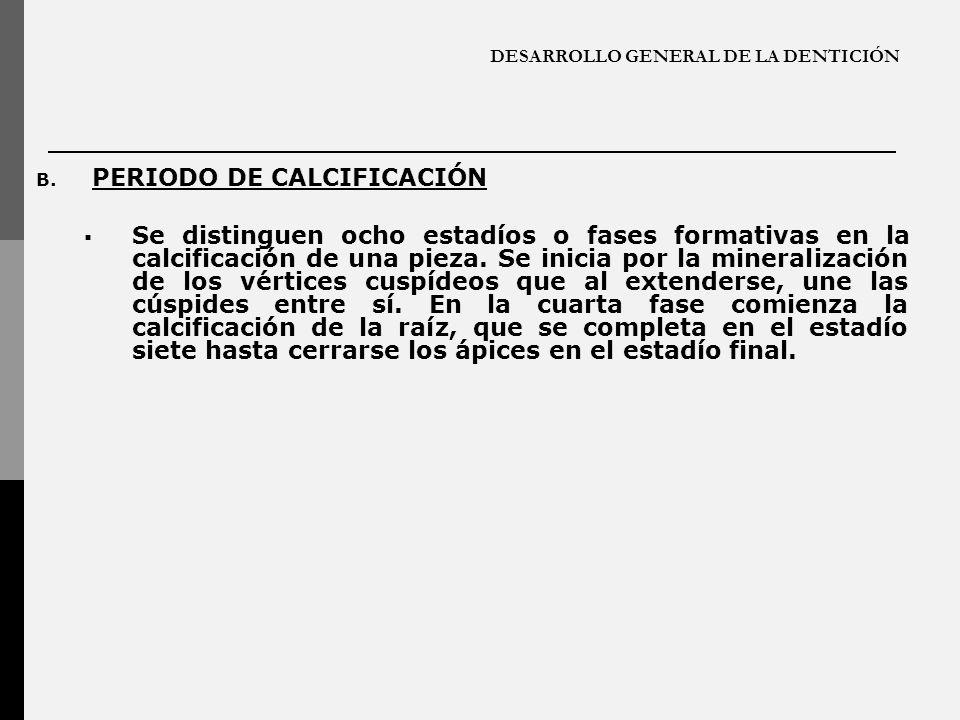 DESARROLLO GENERAL DE LA DENTICIÓN