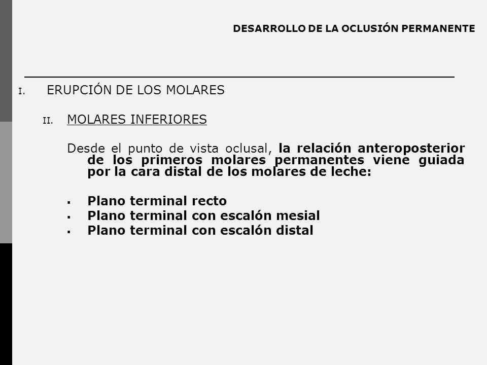 DESARROLLO DE LA OCLUSIÓN PERMANENTE