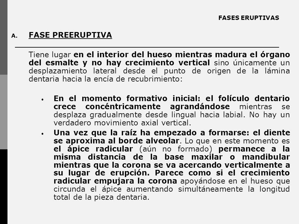 FASES ERUPTIVAS FASE PREERUPTIVA.