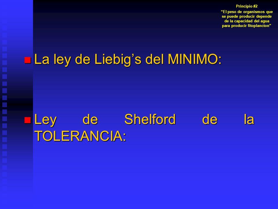 La ley de Liebig's del MINIMO: