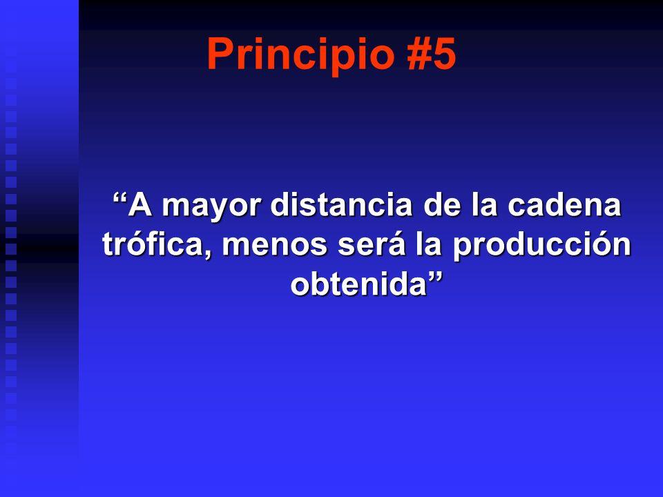Principio #5 A mayor distancia de la cadena trófica, menos será la producción obtenida