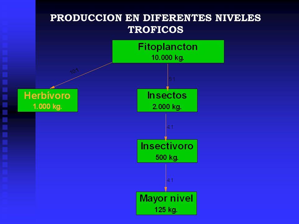 PRODUCCION EN DIFERENTES NIVELES TROFICOS