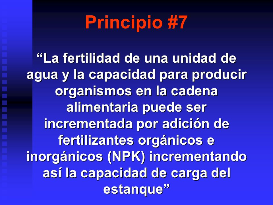Principio #7
