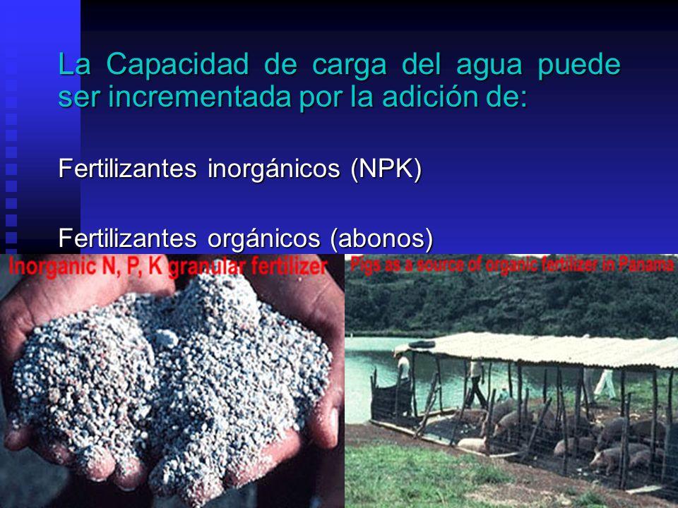 La Capacidad de carga del agua puede ser incrementada por la adición de: