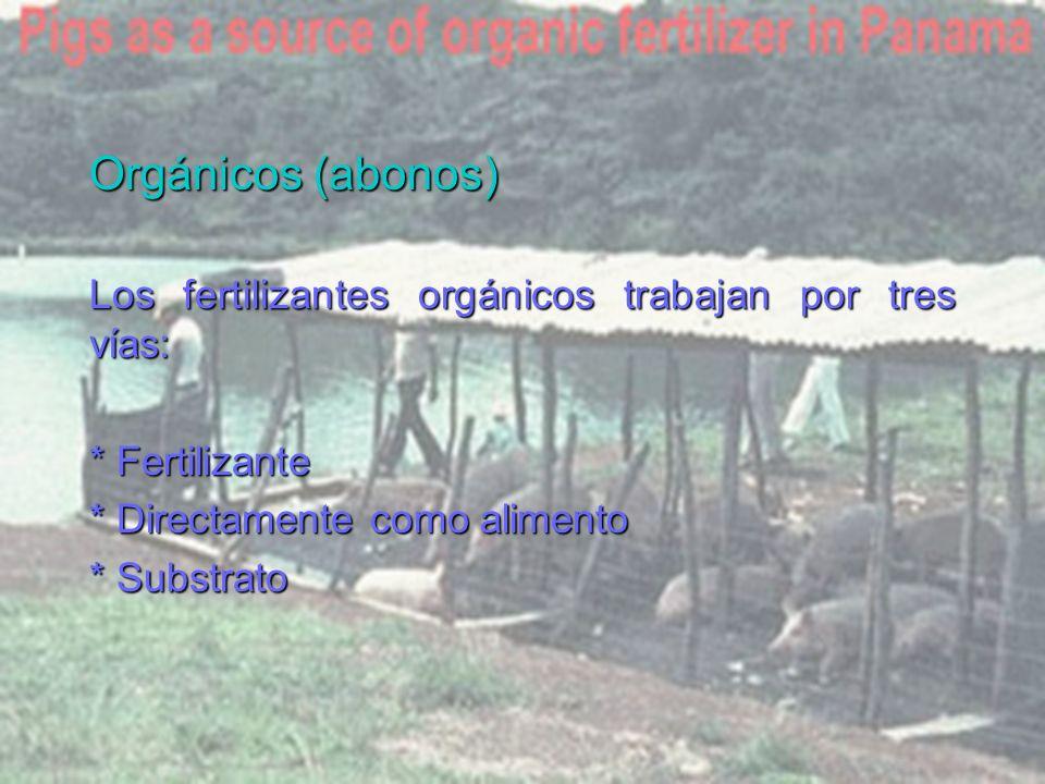 Orgánicos (abonos) Los fertilizantes orgánicos trabajan por tres vías: