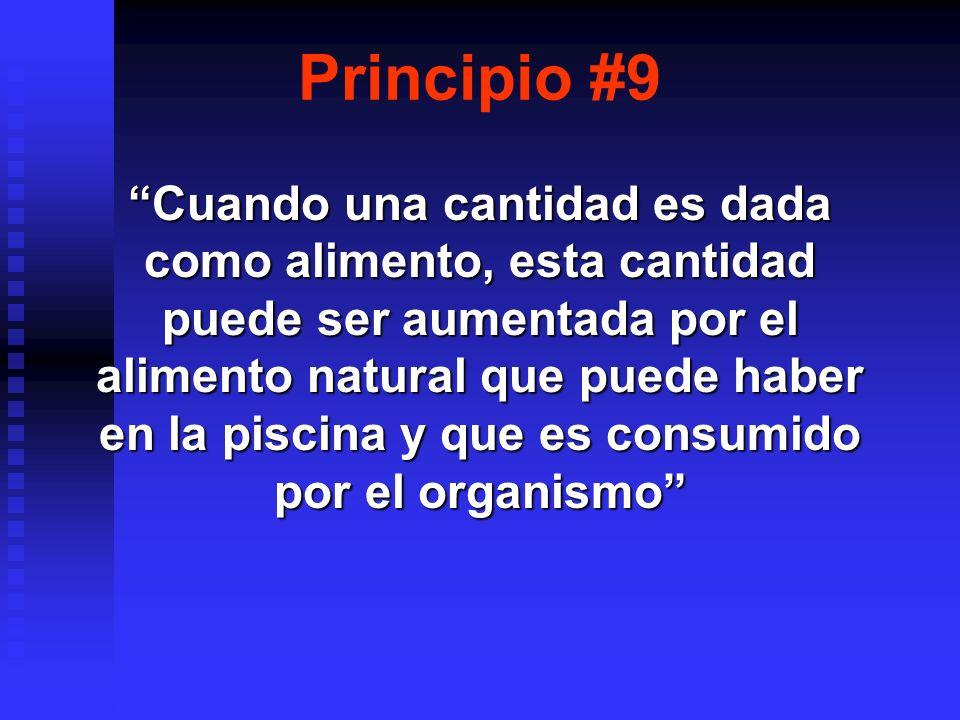 Principio #9