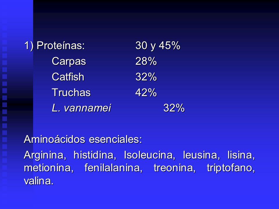 1) Proteínas: 30 y 45% Carpas 28% Catfish 32% Truchas 42% L. vannamei 32% Aminoácidos esenciales: