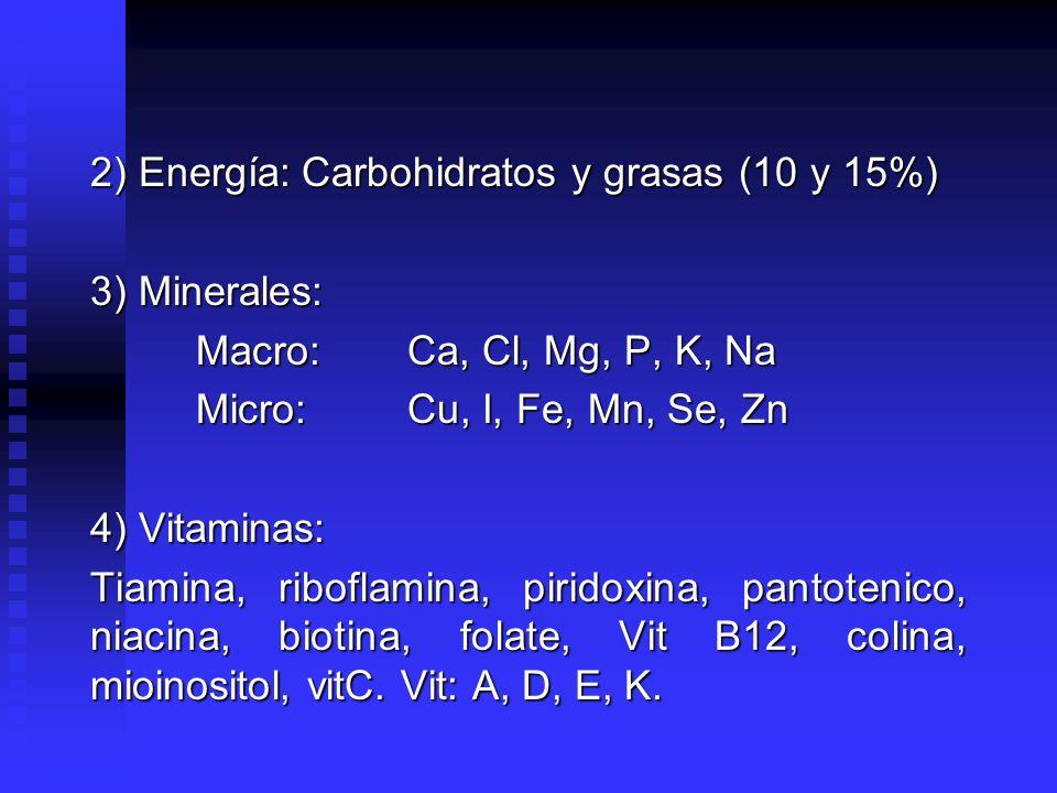 2) Energía: Carbohidratos y grasas (10 y 15%)