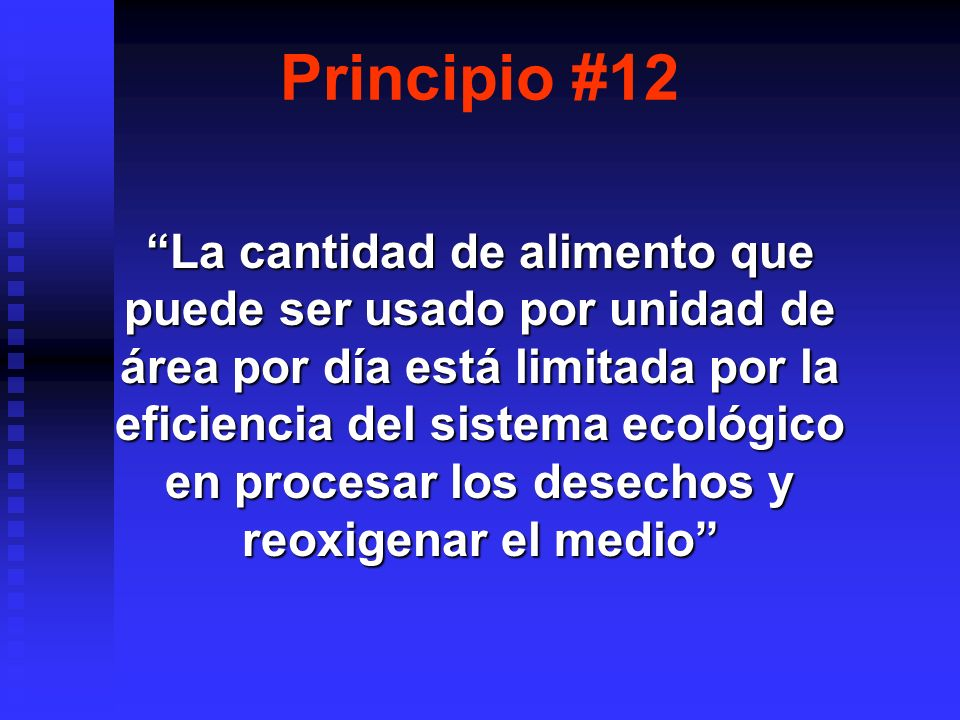 Principio #12