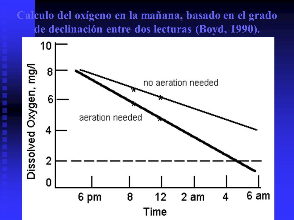 Calculo del oxígeno en la mañana, basado en el grado de declinación entre dos lecturas (Boyd, 1990).