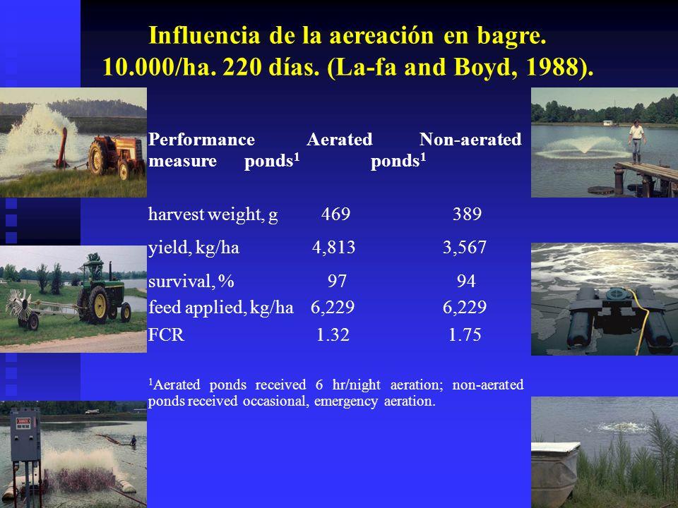 Influencia de la aereación en bagre. 10. 000/ha. 220 días