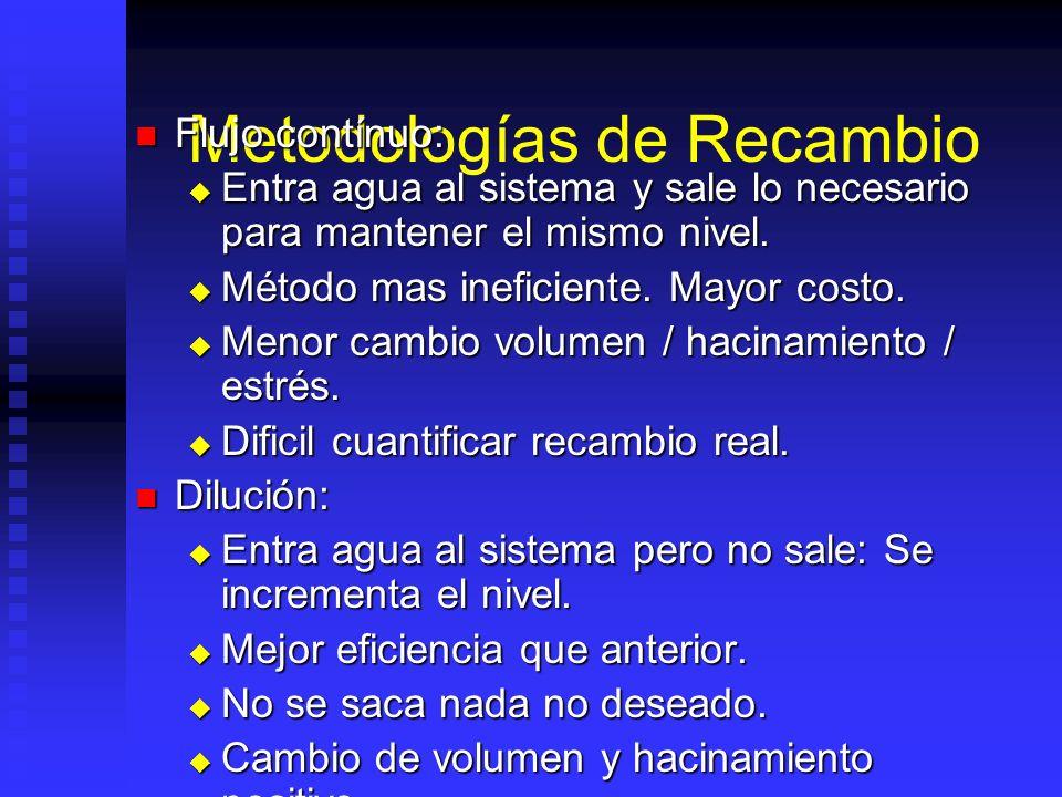 Metodologías de Recambio