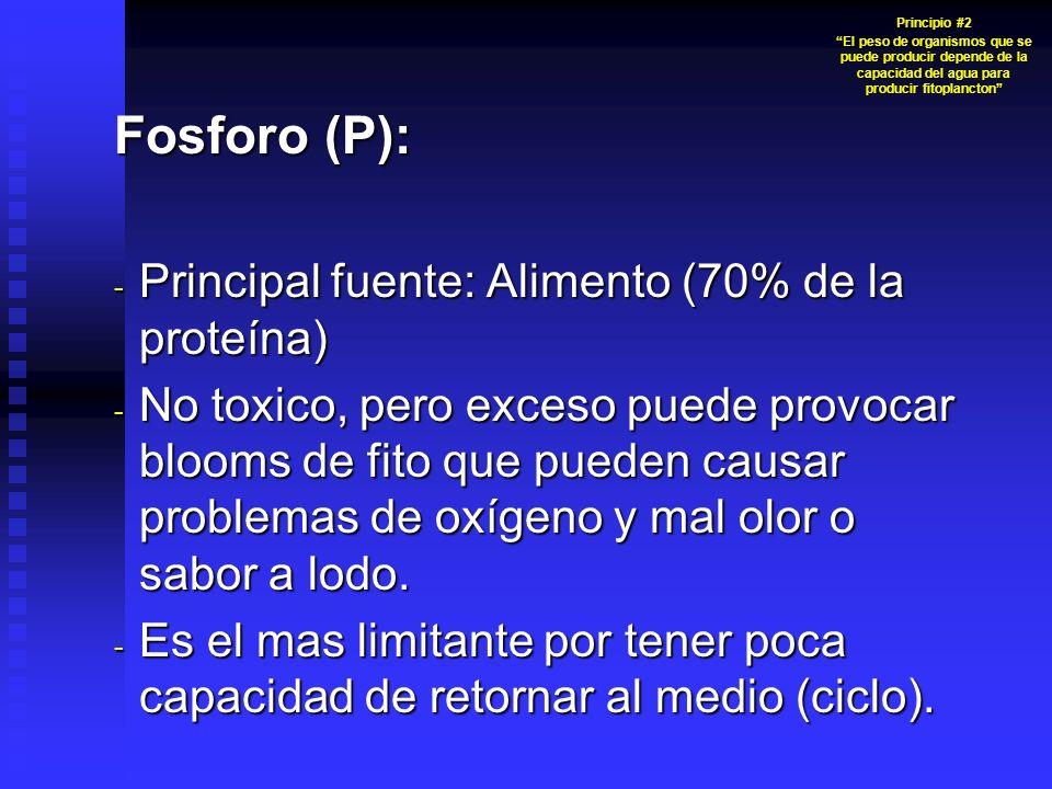 Fosforo (P): Principal fuente: Alimento (70% de la proteína)