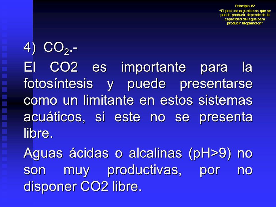 Principio #2 El peso de organismos que se puede producir depende de la capacidad del agua para producir fitoplancton