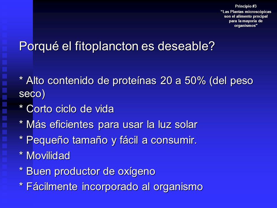 Porqué el fitoplancton es deseable