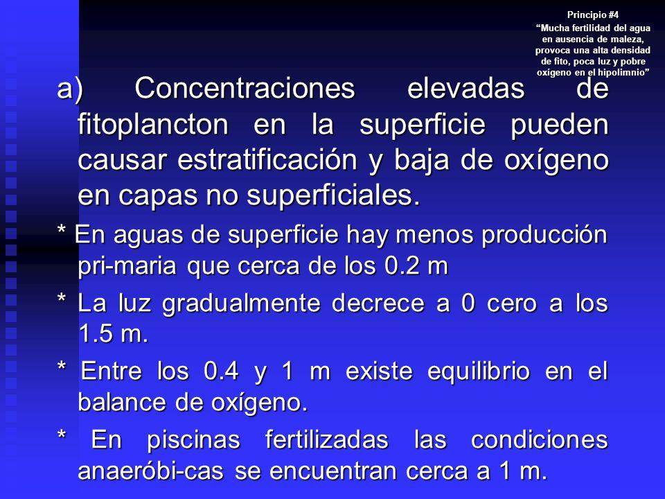 Principio #4 Mucha fertilidad del agua en ausencia de maleza, provoca una alta densidad de fito, poca luz y pobre oxígeno en el hipolimnio