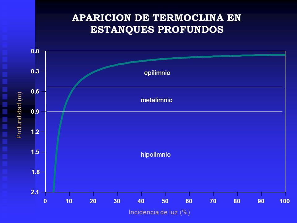 APARICION DE TERMOCLINA EN ESTANQUES PROFUNDOS
