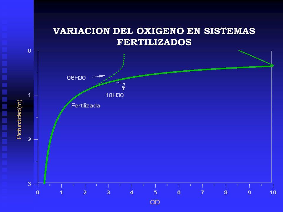 VARIACION DEL OXIGENO EN SISTEMAS FERTILIZADOS