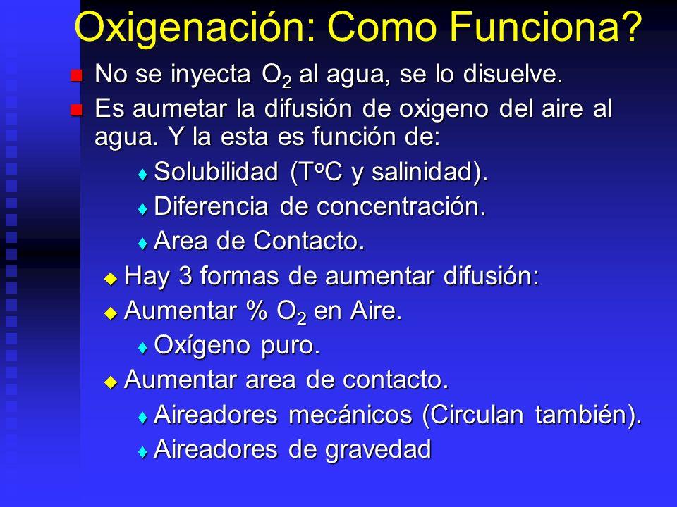 Oxigenación: Como Funciona