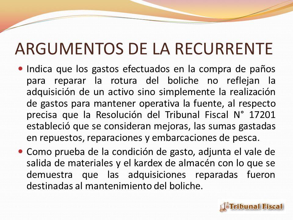 ARGUMENTOS DE LA RECURRENTE