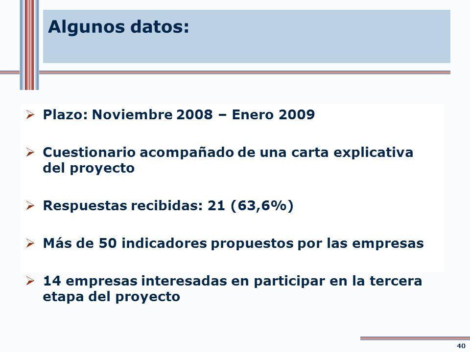 Algunos datos: Plazo: Noviembre 2008 – Enero 2009