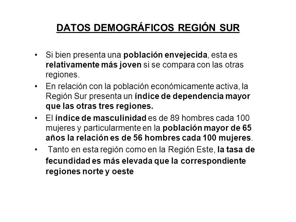 DATOS DEMOGRÁFICOS REGIÓN SUR