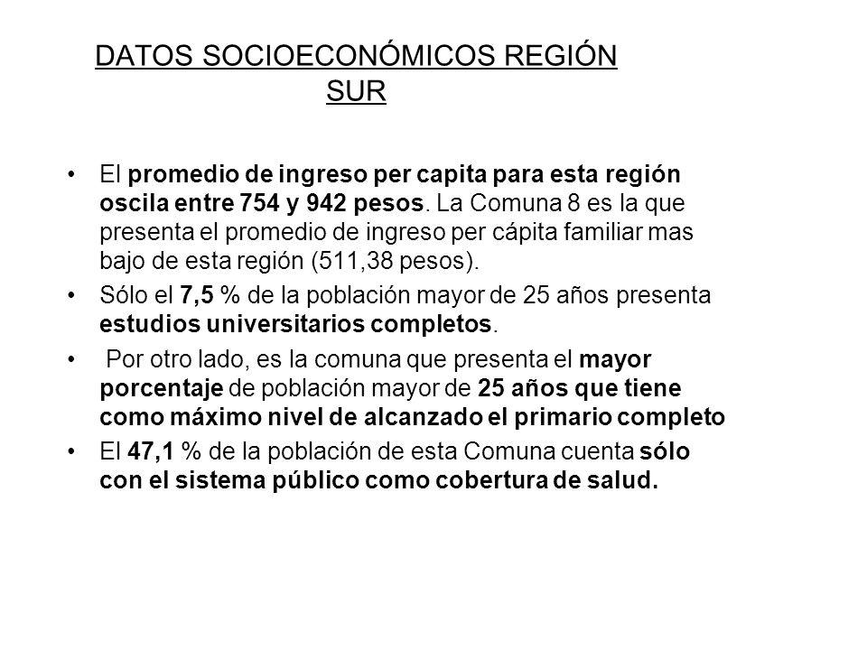 DATOS SOCIOECONÓMICOS REGIÓN SUR
