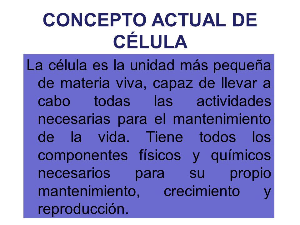 CONCEPTO ACTUAL DE CÉLULA