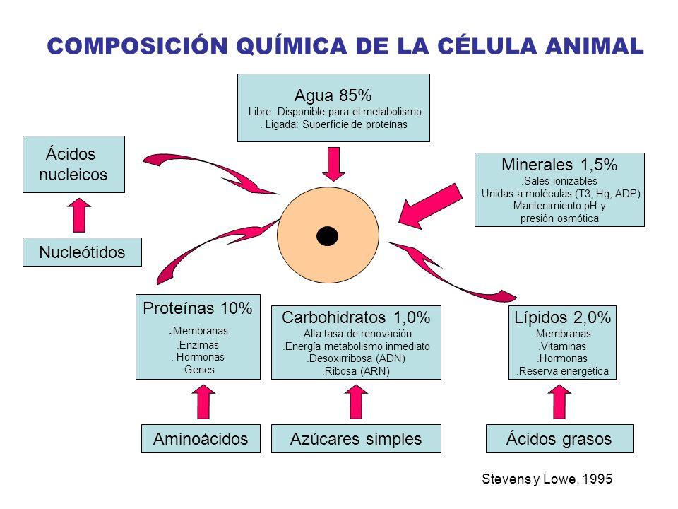 COMPOSICIÓN QUÍMICA DE LA CÉLULA ANIMAL
