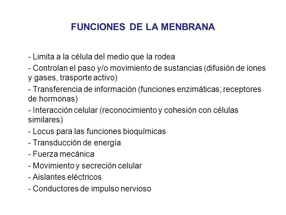 FUNCIONES DE LA MENBRANA