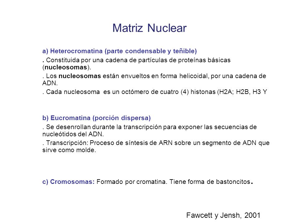 Matriz Nuclear Fawcett y Jensh, 2001