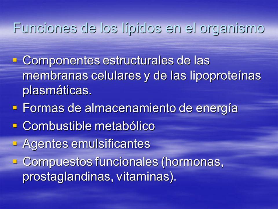 Funciones de los lípidos en el organismo