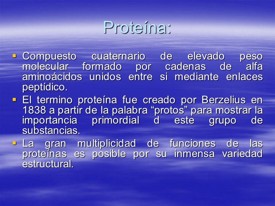 Proteína: Compuesto cuaternario de elevado peso molecular formado por cadenas de alfa aminoácidos unidos entre si mediante enlaces peptídico.
