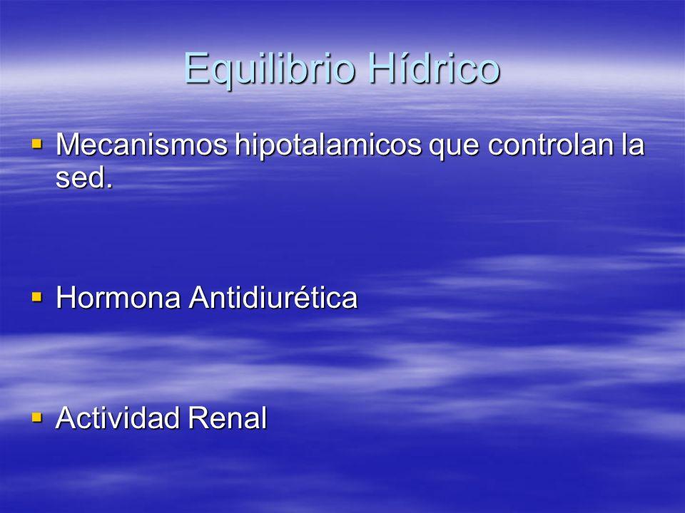Equilibrio Hídrico Mecanismos hipotalamicos que controlan la sed.