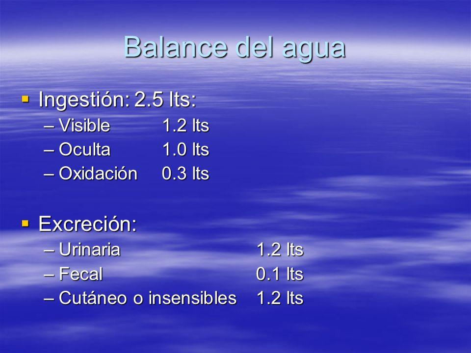 Balance del agua Ingestión: 2.5 lts: Excreción: Visible 1.2 lts