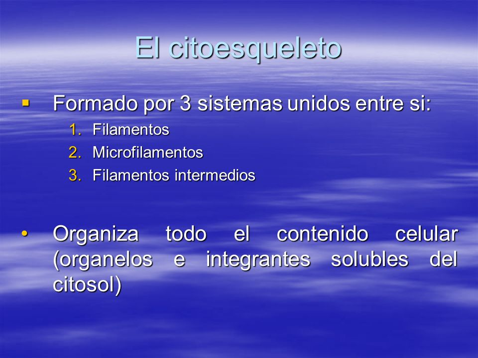El citoesqueleto Formado por 3 sistemas unidos entre si: