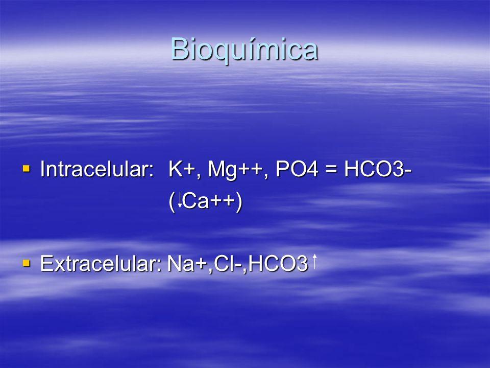 Bioquímica Intracelular: K+, Mg++, PO4 = HCO3- ( Ca++)