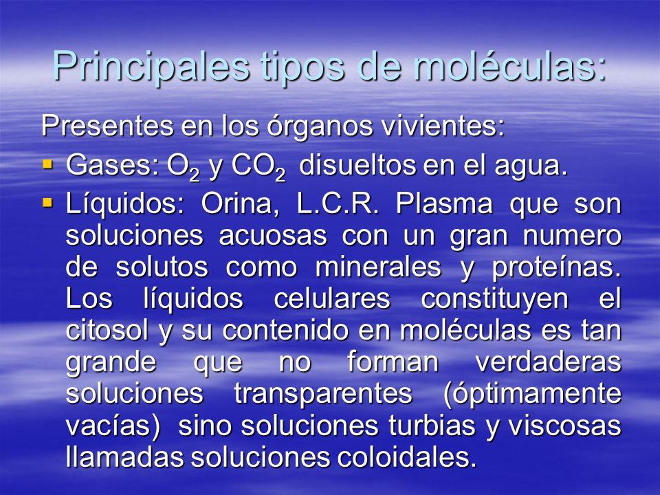 Principales tipos de moléculas: