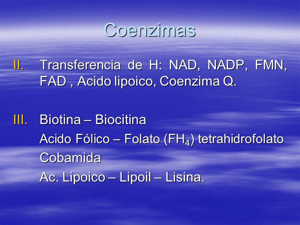 Coenzimas Transferencia de H: NAD, NADP, FMN, FAD , Acido lipoico, Coenzima Q. Biotina – Biocitina.