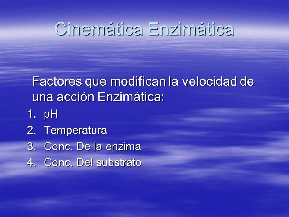 Cinemática Enzimática