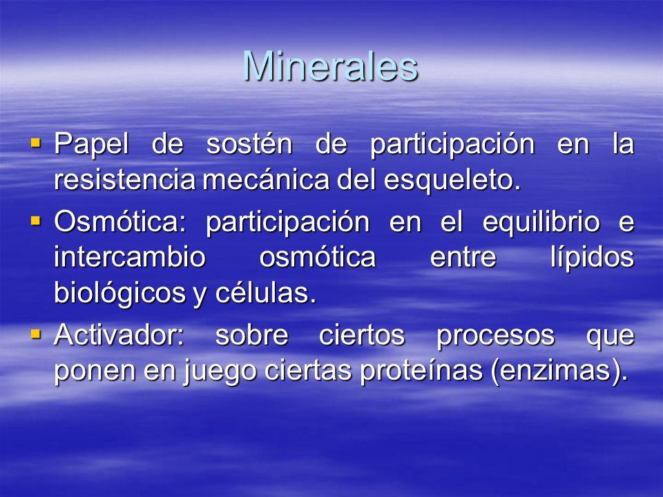 Minerales Papel de sostén de participación en la resistencia mecánica del esqueleto.