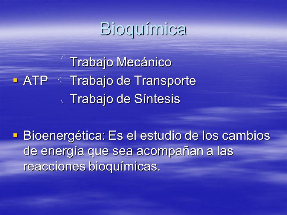 Bioquímica Trabajo Mecánico ATP Trabajo de Transporte