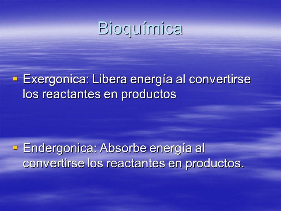 Bioquímica Exergonica: Libera energía al convertirse los reactantes en productos.