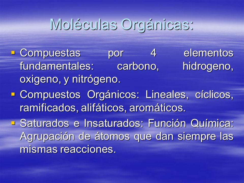 Moléculas Orgánicas: Compuestas por 4 elementos fundamentales: carbono, hidrogeno, oxigeno, y nitrógeno.