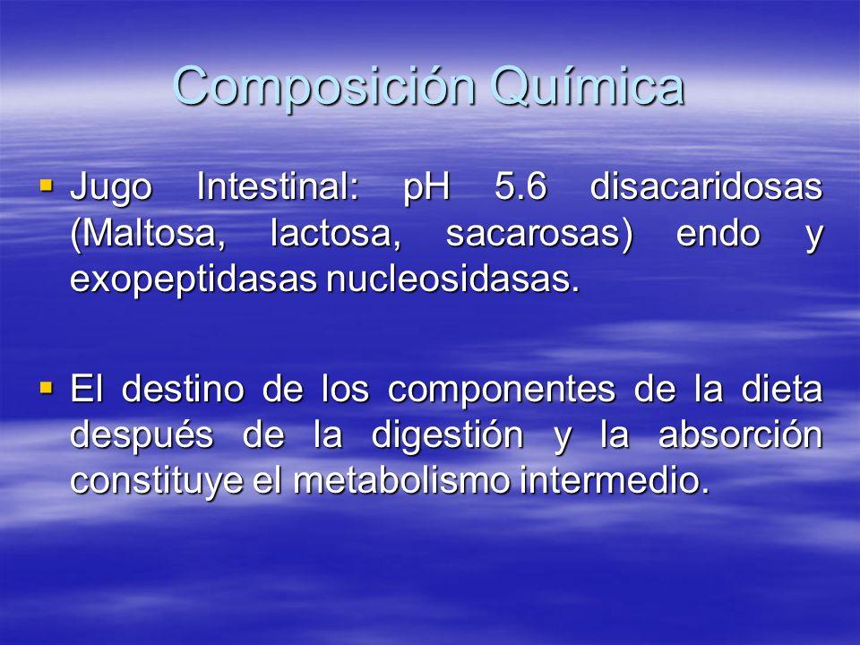 Composición Química Jugo Intestinal: pH 5.6 disacaridosas (Maltosa, lactosa, sacarosas) endo y exopeptidasas nucleosidasas.