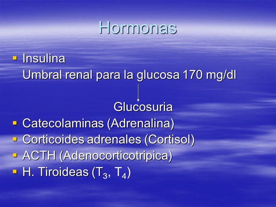 Hormonas Insulina Umbral renal para la glucosa 170 mg/dl Glucosuria